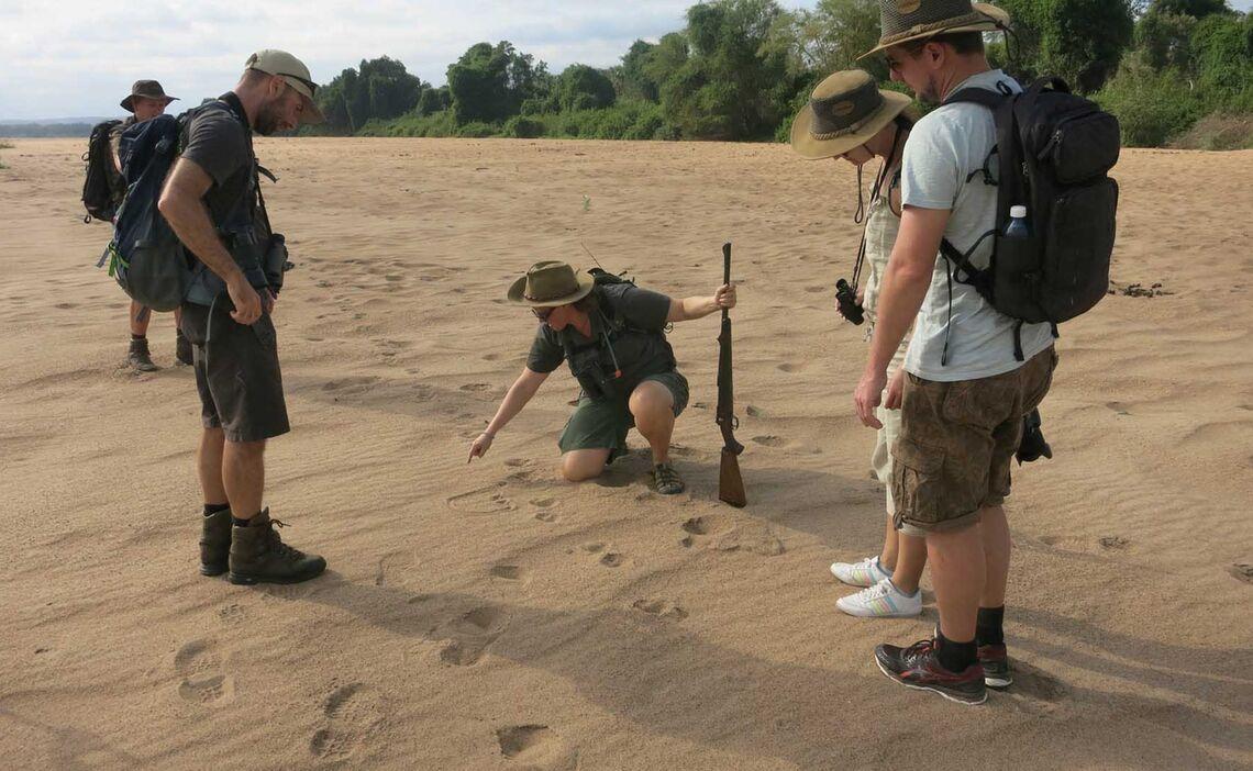 Pafuri Limpopo Flussbett
