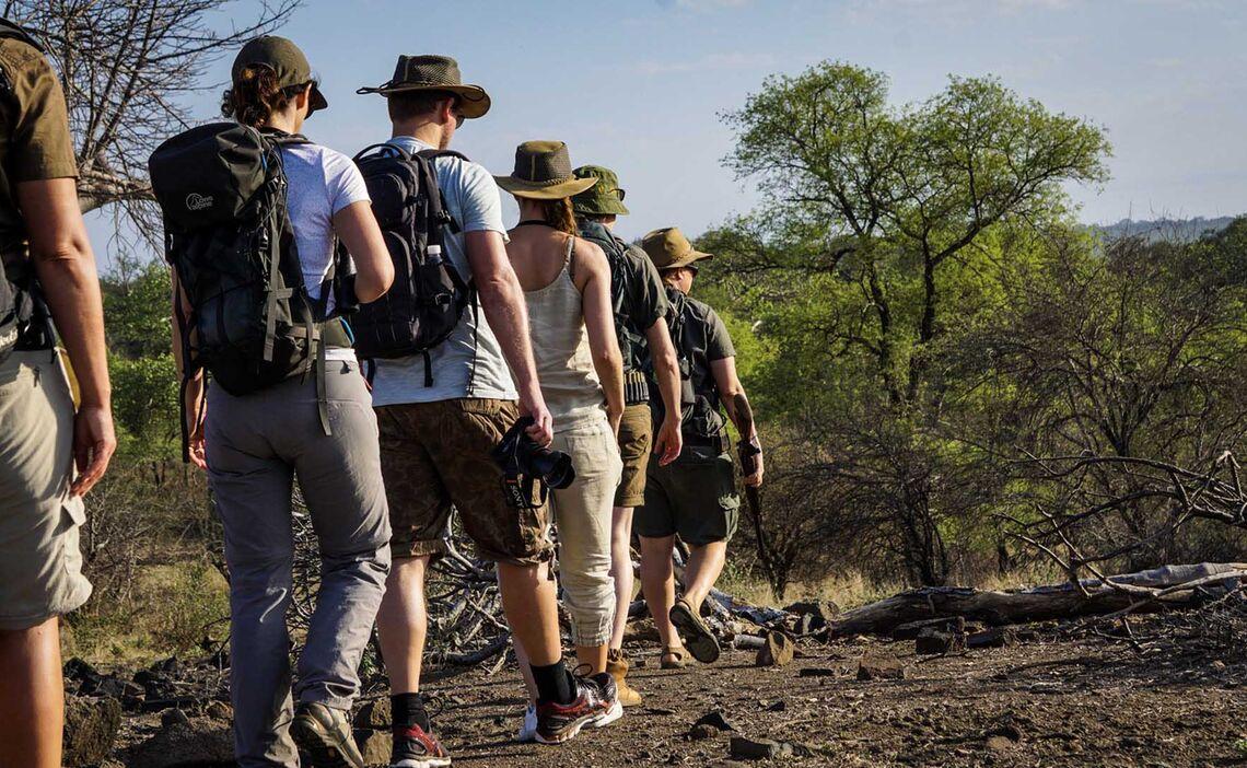 Pafuri Walking Safari