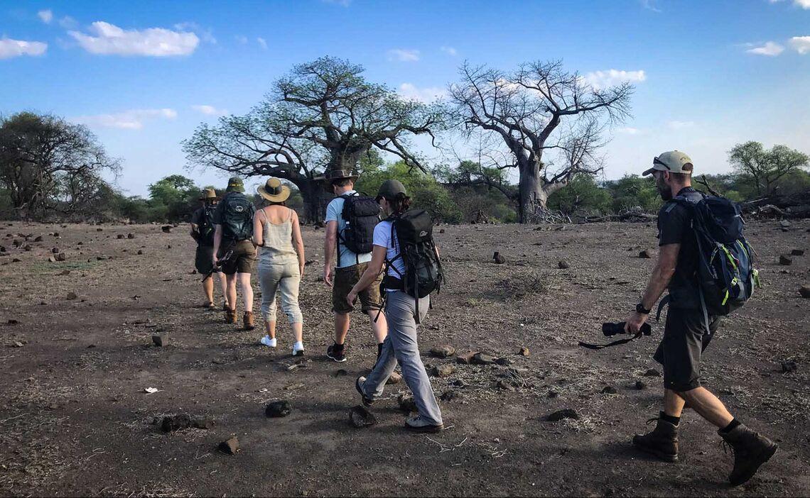 Pafuri Walking Safari2