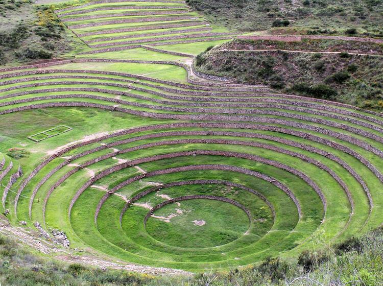Peru Marenas