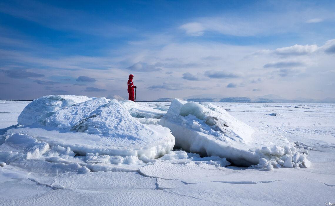Polarba Renwache Auf Spitzbergen Polarcode
