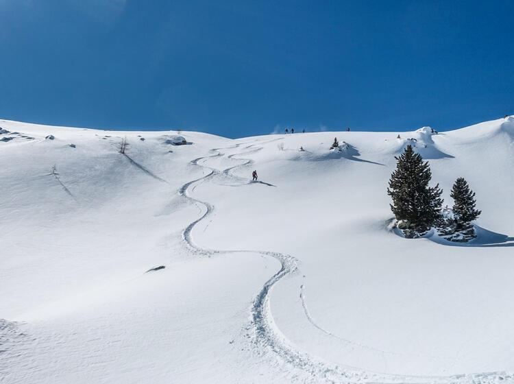 Pulverschnee Abfahrt Auf Skitour Im Val Muestair