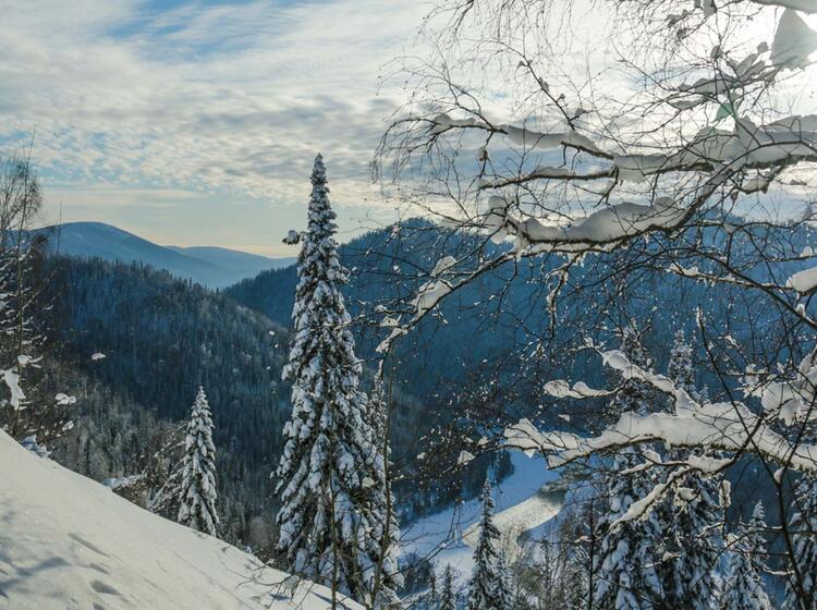 Pulverschnee Im Altai Gebirge Bei Der Skitourenreise