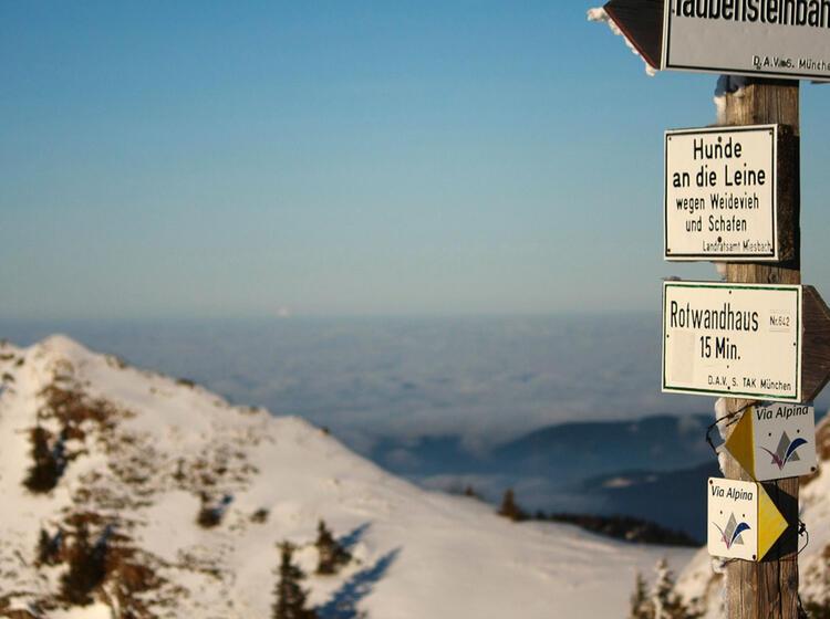 Rotwandreibn Zum Taubensteinhaus Mit Schneeschuhen