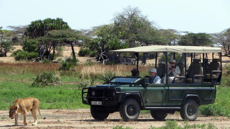 Safari Lo We 1