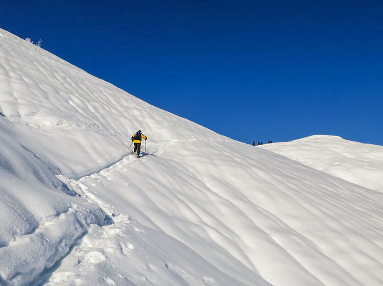 Schneeschuhtouren Im Kleinwalsertal Gefu Hrt