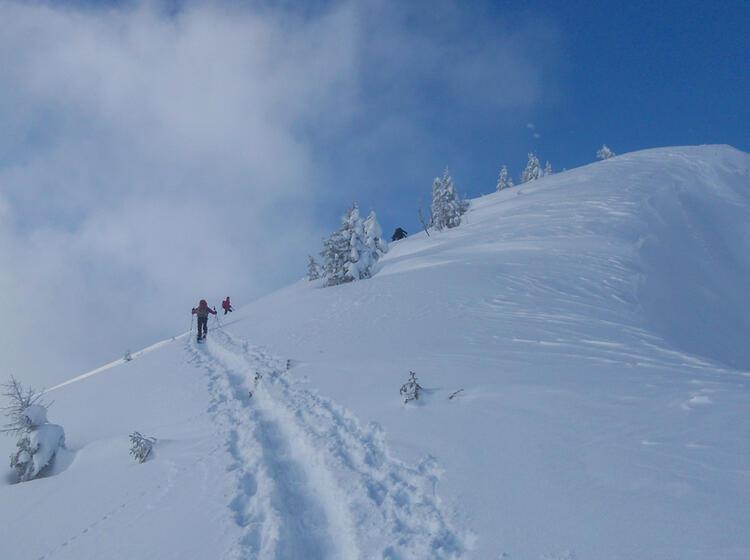 Schneeschuhtouren Rund Um Das Kleinwalsertal Von Der Schwarzwasserhu Tte