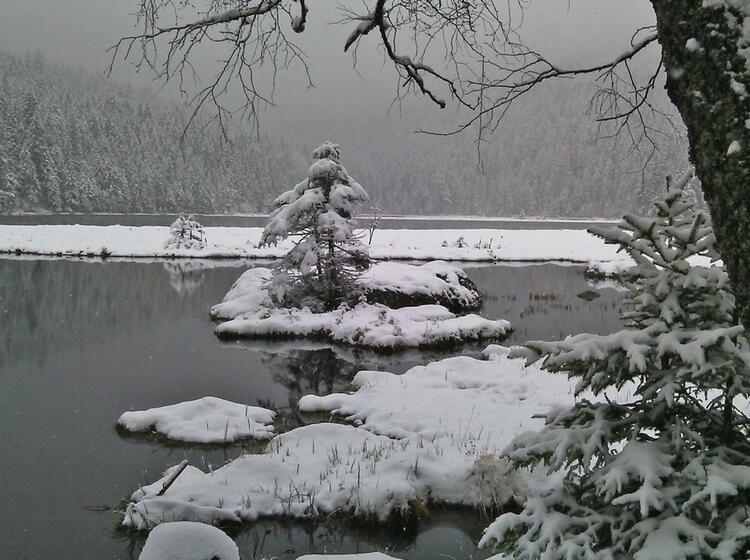 Schneeschuhwandern Bayrischer Wald Winterlandschaft