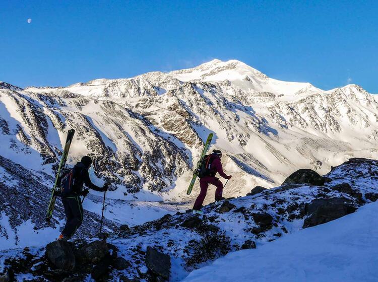 Ski Hochtour Cevedale Mit Bergfuehrer