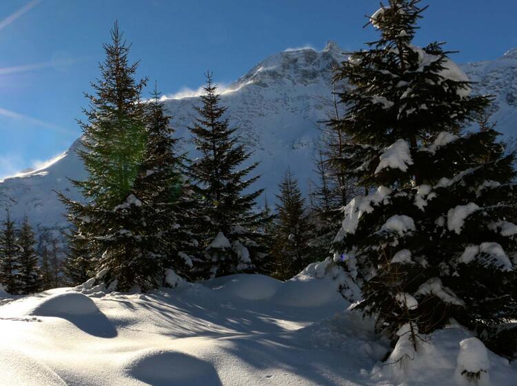Skitour Rauris Mit Bergfuehrer