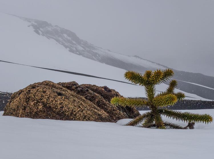Skitouren Gehen In Chile