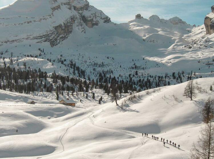Skitouren Gruppe Im Anstieg Von Der Lavarella Hu Tte In Der Fanes