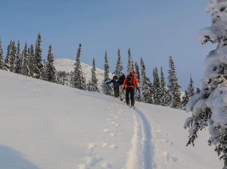 Skitouren In Russland Im Sibirischen Altai Gebirge