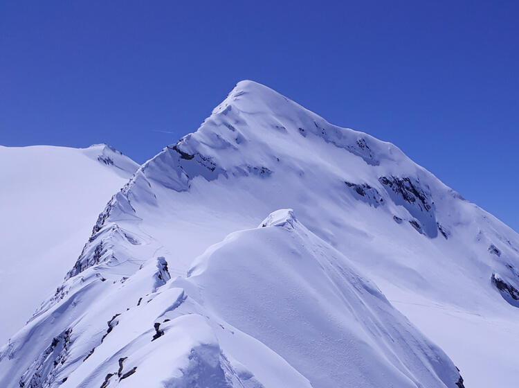 Skitouren Rund Um Die Langtalereckhuette