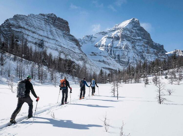Skitouren Und Freeriden In Kanada Canmore