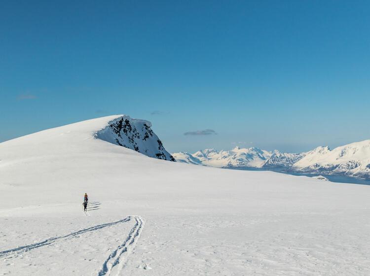 Skitourengebiet Lyngen In Der Naehe Von Tromsoe