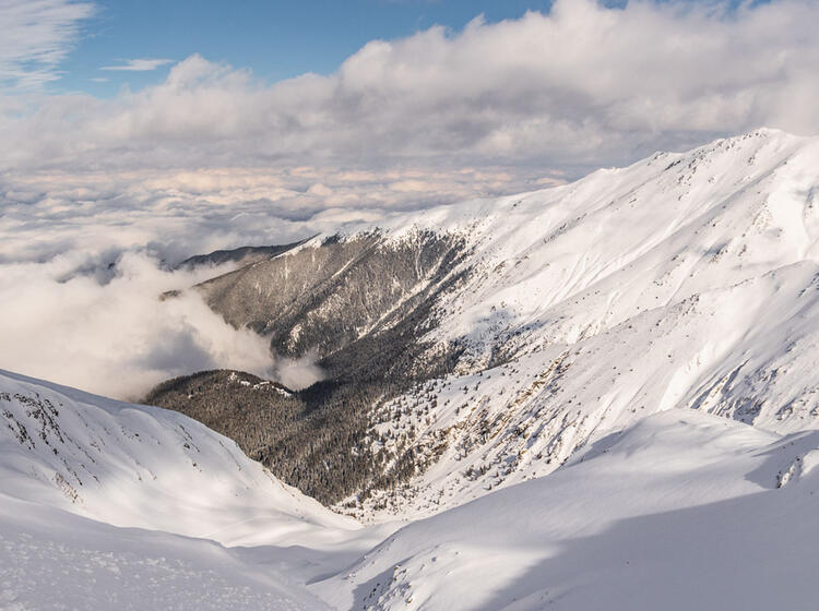 Tief Verschneites Gelaende Auf Der Skitourenreise Rumaenien
