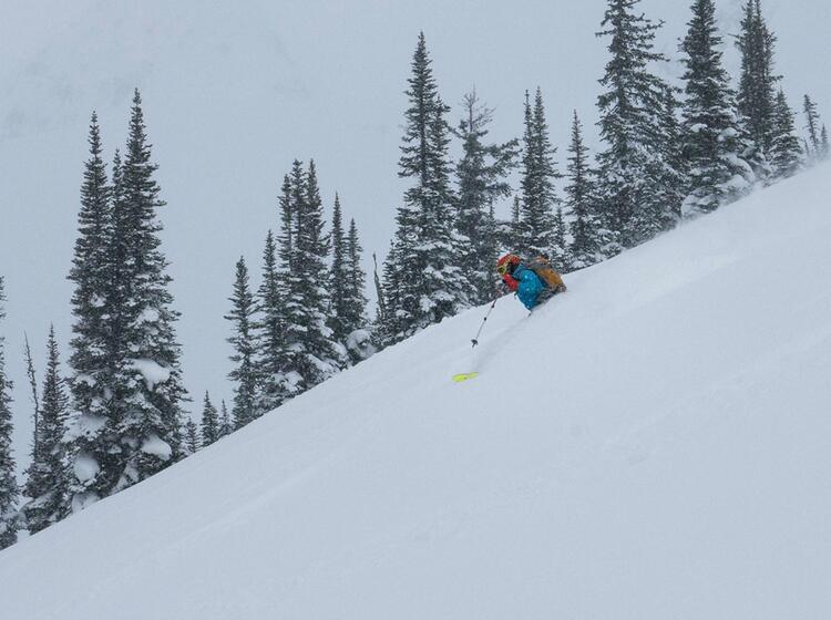 Tiefschneefahren Und Freeriden In Kanada Mit Bergfuehrer