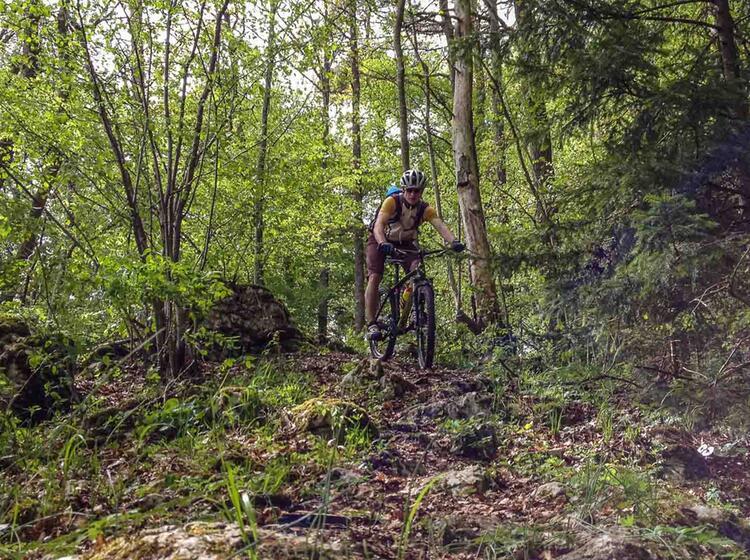 Trail Kurs