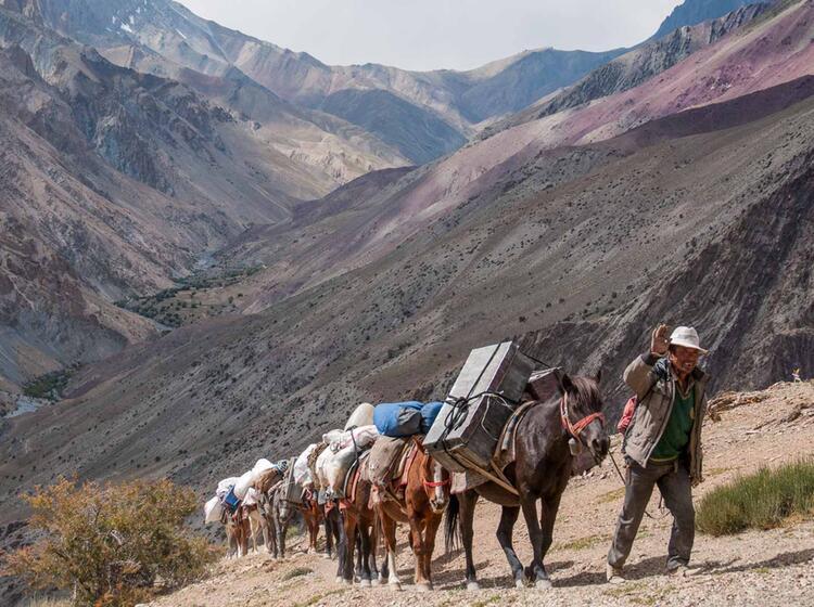 Trekkin In Tibet Ladakh