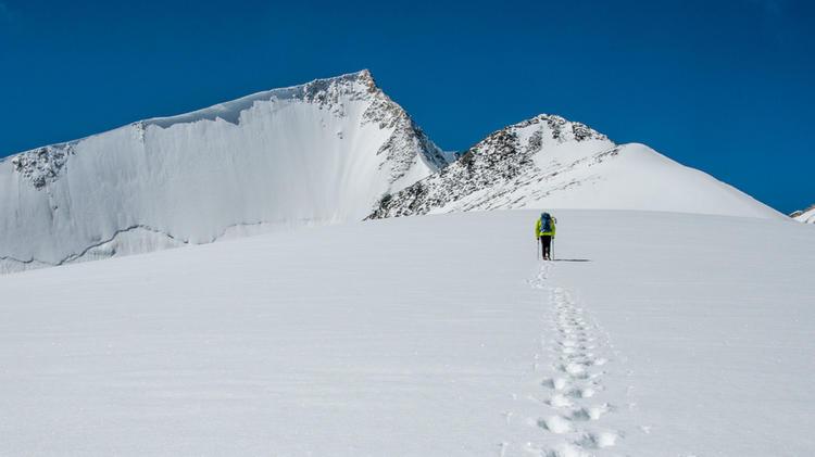 Trekking In Ladakh Im Hintergrund Der Dso Yongo