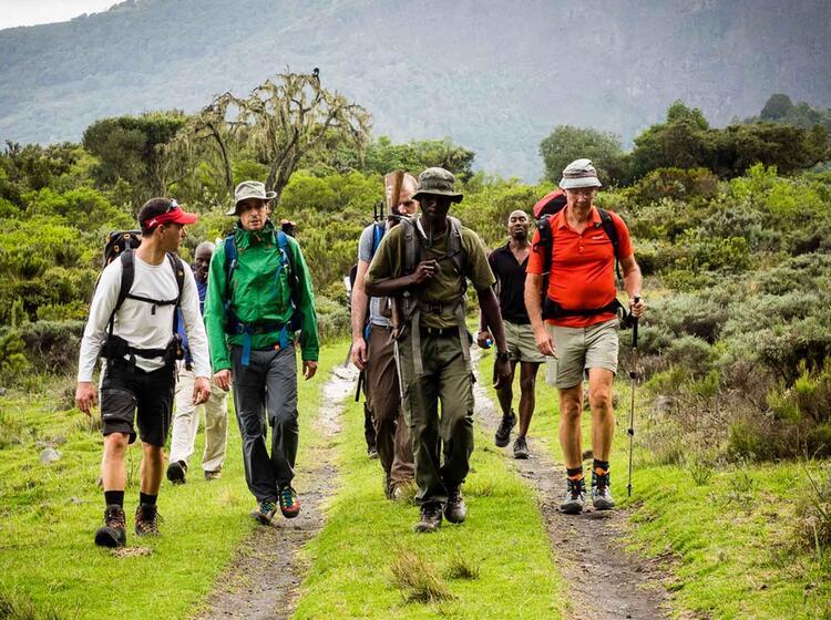 Trekking Mit Deutschem Und Einheimischem Fuehrer Am Kilimandscharo
