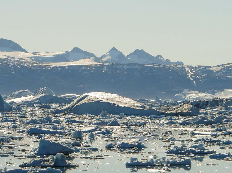 Trekking Sermilik Fjord Ostgroenland Groenland