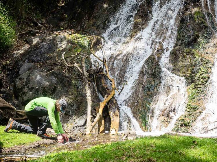Trekking Und Bergsteigen In Afrika Am Kilimandscharo