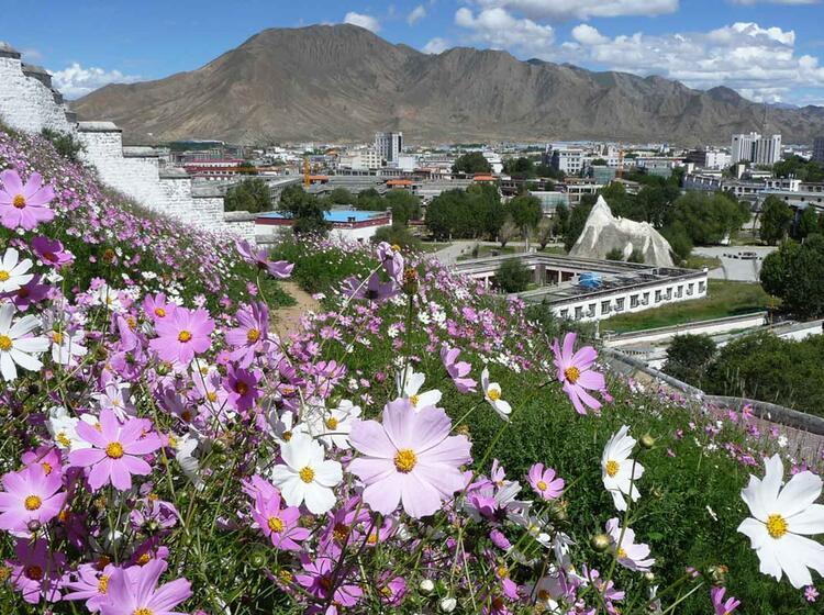 Trekkingreise Nach Tibet