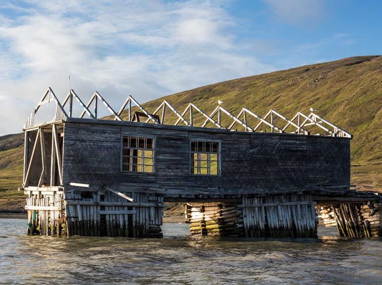 Verfallener Pier Auf Spitzbergen