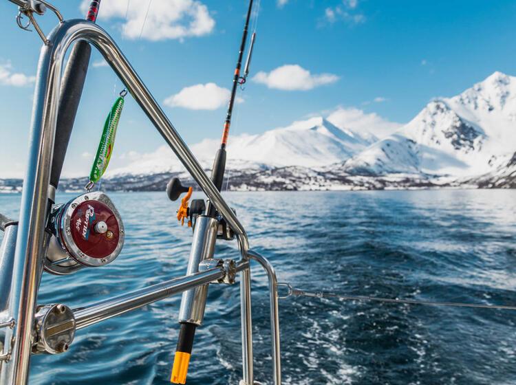 Von Fjord Zu Fjord Bei Der Skitourenreise Mit Dem Schiff In Norwegen