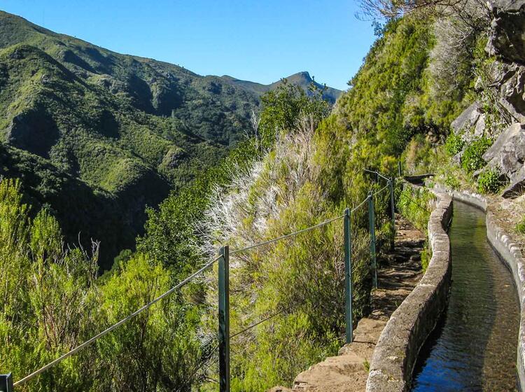 Wander Entlang Der Wassergraeben Auf Madeira