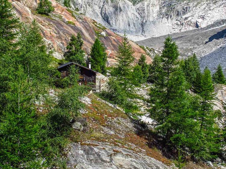 Wandern Am Gletscher Mit Bergfuehrer