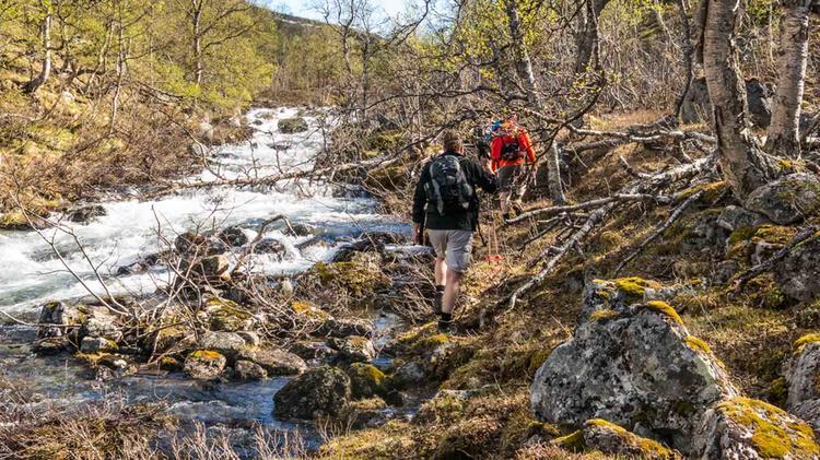 Wandern Am Polarkreis In Nord Norwegen