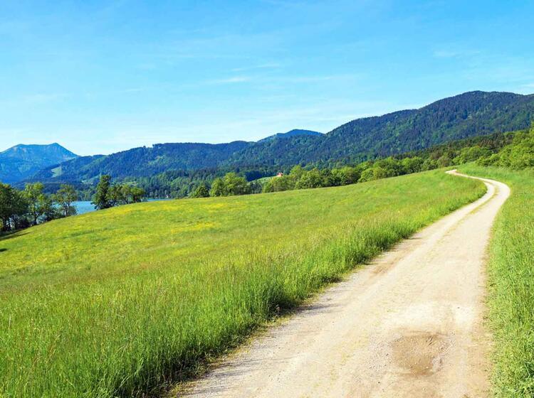 Wandern Am Schliersee