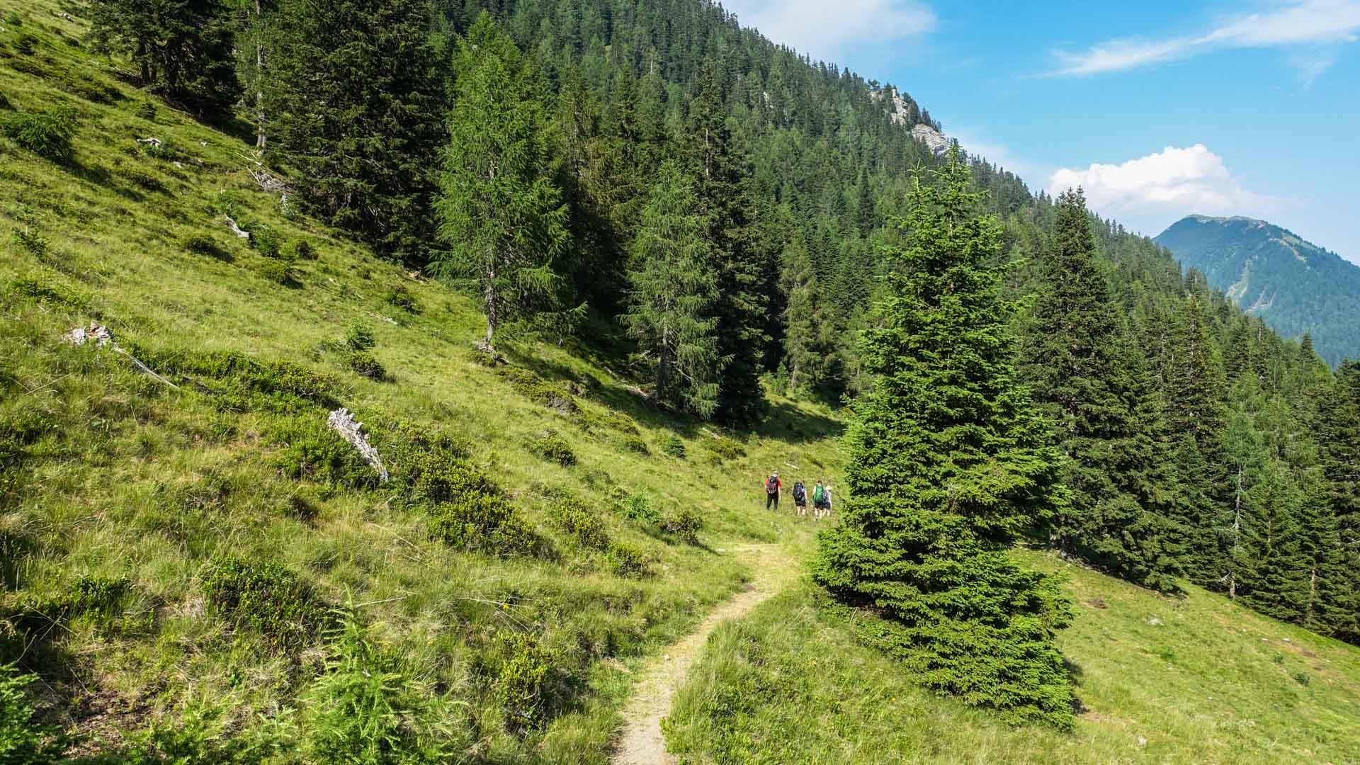 Wandern auf dem Karnischen Höhenweg