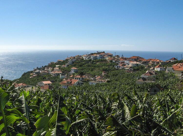 Wandern Auf Der Blumen Insel Madeira Mit Deutschem Reiseleiter