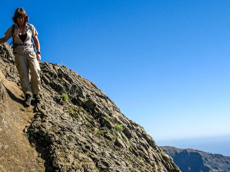 Wandern Auf Der Insel Madeira Mit Deutschem Wanderfuehrer