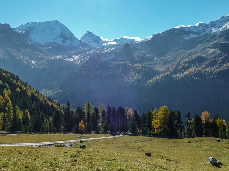 Wandern Im Herbstlichen Ahrntal