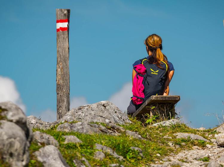 Wandern In Den Alpen Mit Bergfuehrer