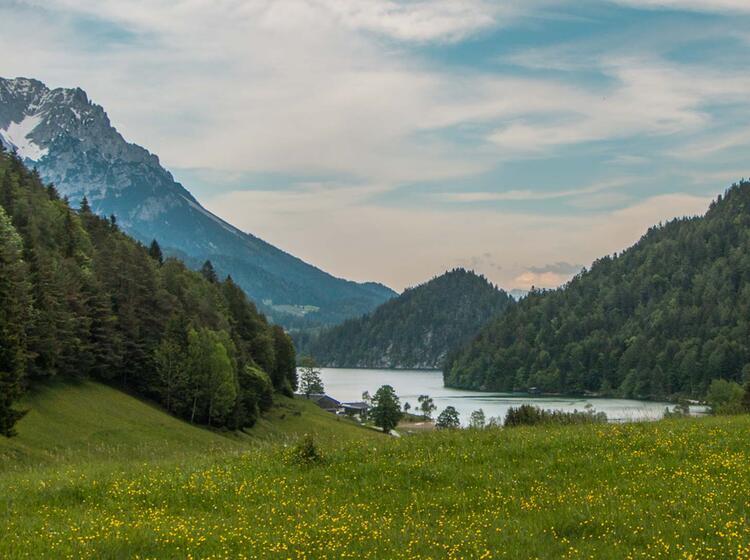 Wandern In Scheffau Und Going