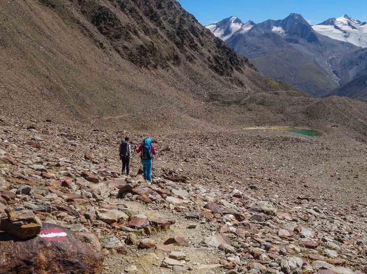 Wandern Mit Bergfuehrer In Der Schweiz