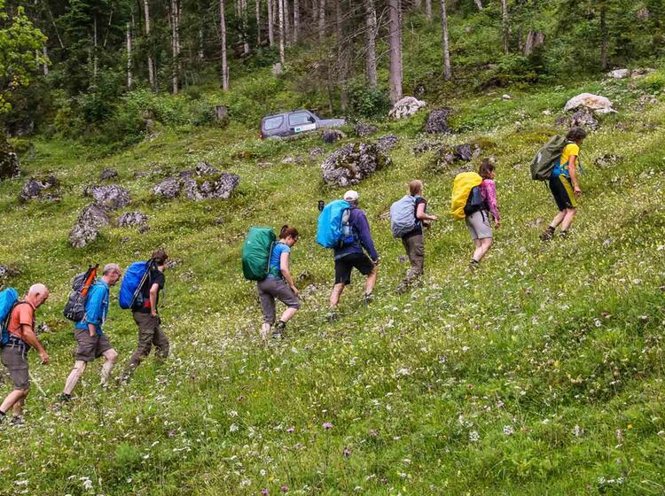 Wandern Mit Bergwanderfuehrer Auf Dem Salzalpensteig