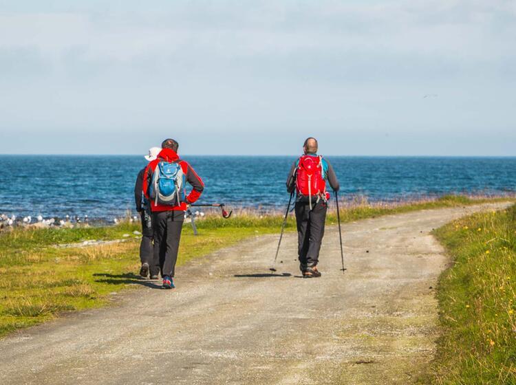Wandern Oberhalb Des Polarkreis In Nordnorwegen