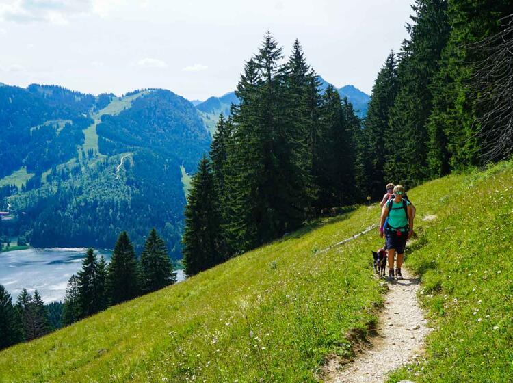 Wandern Rund Um Den Spitzingsee In Den Bayerischen Voralpen
