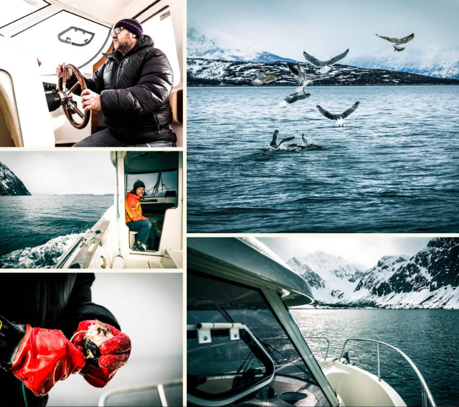 wandern-und-angeln-in-norwegen