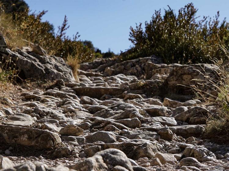 Wanderreise Spanien Sierra Guara Rodellar2 Weg