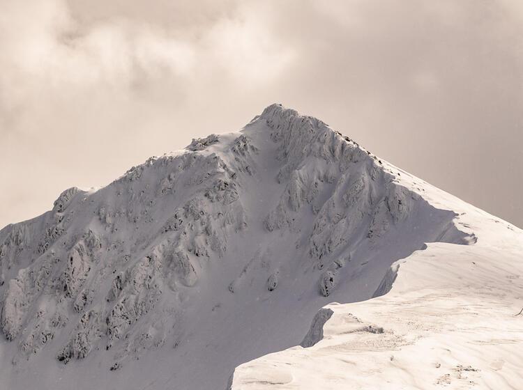 Wildes Ambiente Der Karpaten Im Winter
