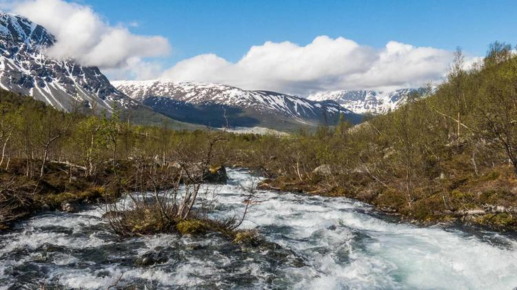 Wildes Wandern In Nordnorwegen